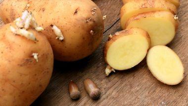 Le patate germogliate si possono mangiare?